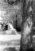 Bachelor's Grove Cemetery Ghost