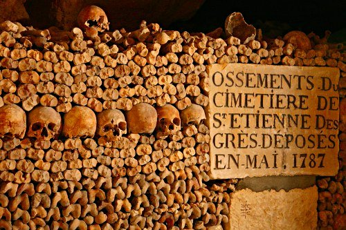 Skulls and bones in the Haunted Catacombs of Paris