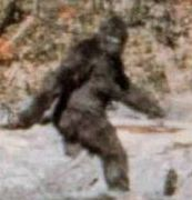 Blurry Bigfoot